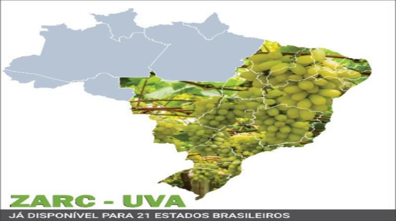 mapa uva zoneamento de risco climatico embrapa