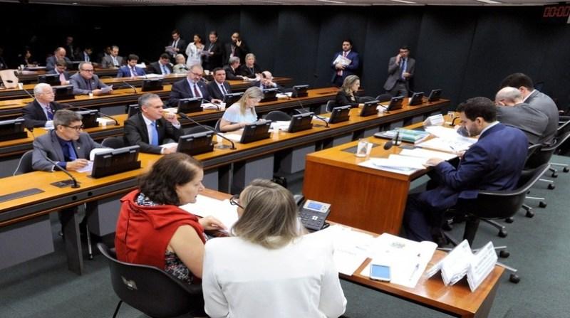 comissão de agricutura cleia viana camara dos deputados