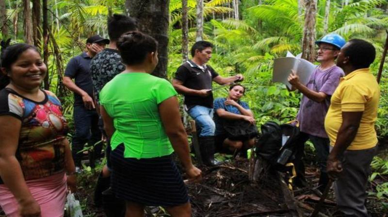 povos tradicionais quilombolas foresta ronaldo rosa embrapa 20 6 19