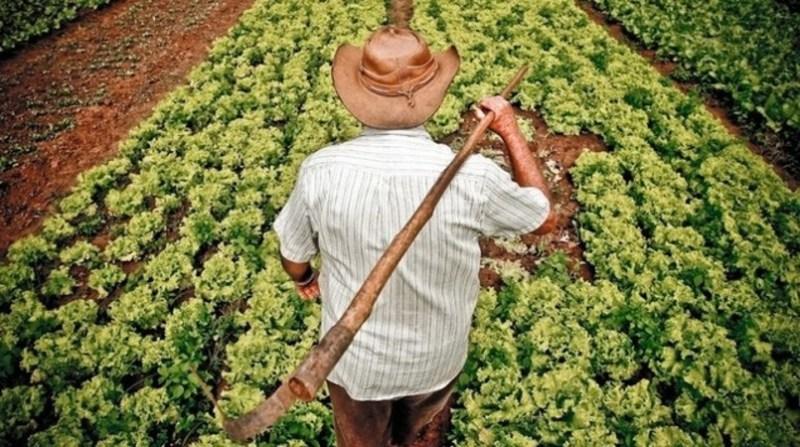 agricultura familiar agricultor com enxada nas costas agencia brasil