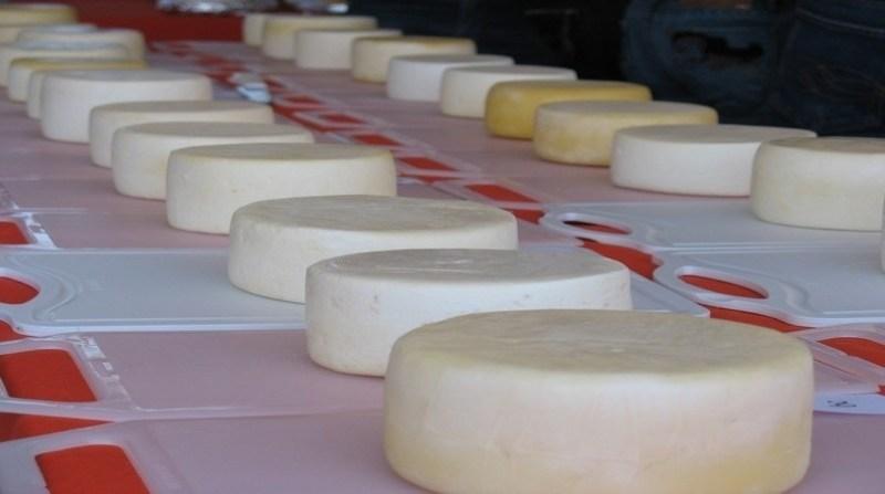 queijo artesanal tiago geisler agencia minas