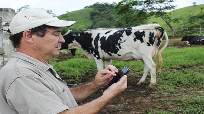 produtor de leite aplicativo celular invertida embrapa