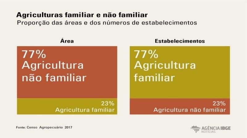 quadro arte 2 agricultura familiar censo ibge