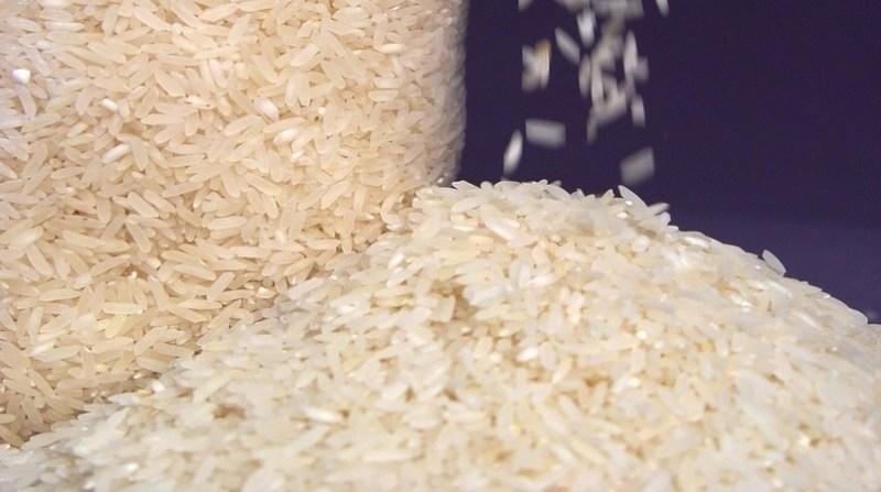 arroz beneficiado irga gov rs