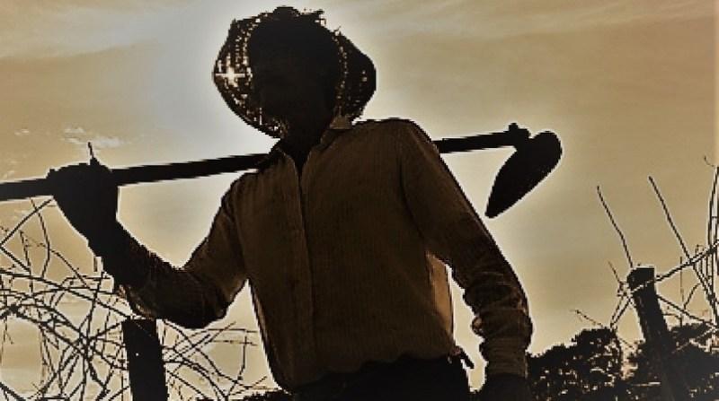 agricultor enxada 2020 2020 2020