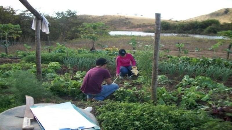 agricultura familiar horta unai jose humberto xavier embrapa