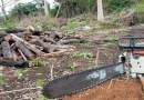 Madeireiro ilegal é morto em operação contra desmatamento em Roraima