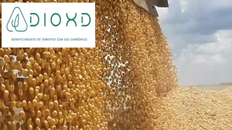 dioxd startup