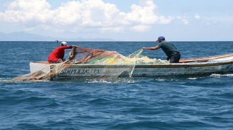 pesca emalhe camara municipal guaruja div