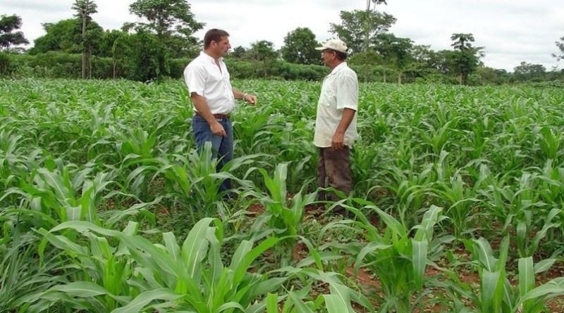 Covid-19: Produtor rural, proteja-se. Siga as orientações do Mapa