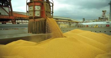 Soja, açúcar e café fazem exportações brasileiras disparem em maio; China é o grande comprador
