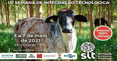 Embrapa: Cooperação e inovação no meio rural favorecem pecuária leiteira