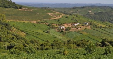 Mais de 600 prefeituras já aderiram ao programa de regularização de terras
