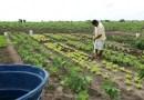 Bolsonaro veta auxílio emergencial de R$ 2,5 mil para agricultores familiares