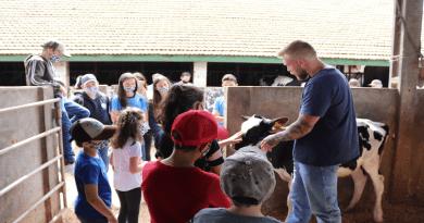 Cooperativa incentiva participação de crianças na produção de leite