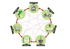 agro-food-value-network