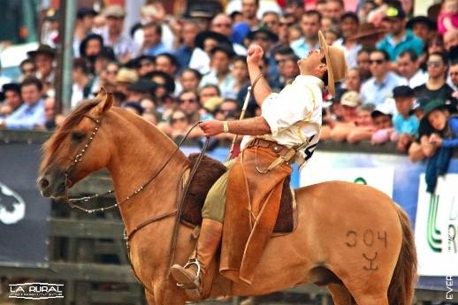 Saúde dos cascos é essencial para o sucesso dos cavalos crioulos, afirma tetracampeão do Freio de Ouro