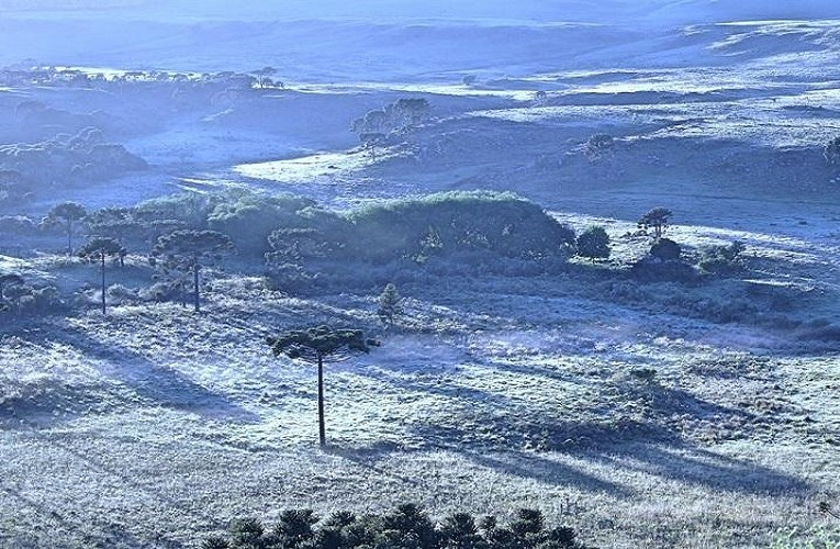 Frio, nevascas e geadas e o grande aquecimento verbal