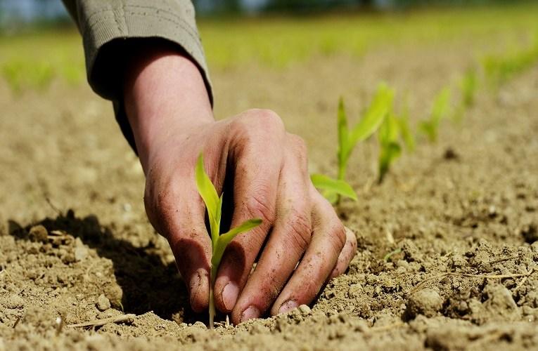 China pós covid alerta ao agronegócio brasileiro