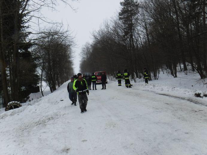 17 sztuk bydła uciekło z gospodarstwa do lasu Fot.: straz-janowlub.pl