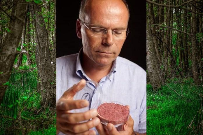 Bioreaktor zamiast kurczaka, krowy i drzewa