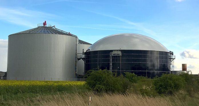 biowave, gnojowica, substraty, nawozy, świnie, biogazownia, gospodarstwo rolne, mikrofala, przemysł spożywczy, biogaz, fermentacja beztlenowa, węgiel