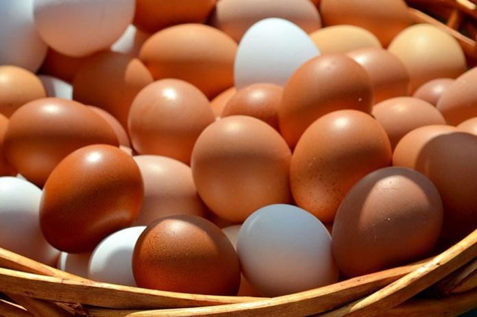W Korei brakuje jaj: skorzystają eksporterzy z UE