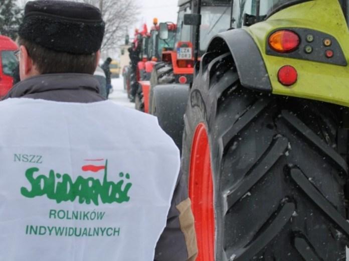 protest rolników, Dobrydział , Zakłady Wędlinka, świnie, trzoda chlewna