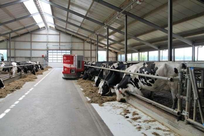 Węgry chcą pomóc polskim hodowcom, rolnik, rolnictwo, olska Federacja Hodowców Bydła i Producentów Mleka, PFHBiPM, ambasada Węgier, pasze,