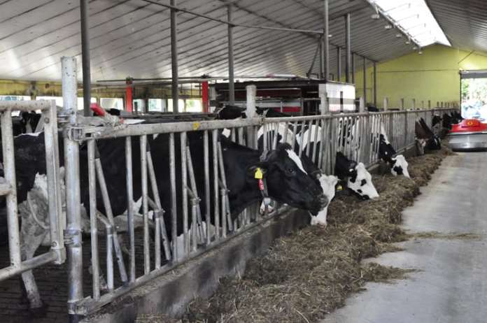 dobrostan zwierząt, Europejski Trybunał Obrachunkowy,Komisja Europejska, Euractiv, Copa-Cogeca, AnimalhealthEurope,