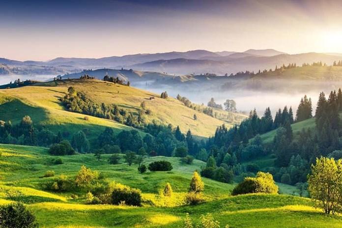 UE zwiększa ambicje w zakresie bioróżnorodności