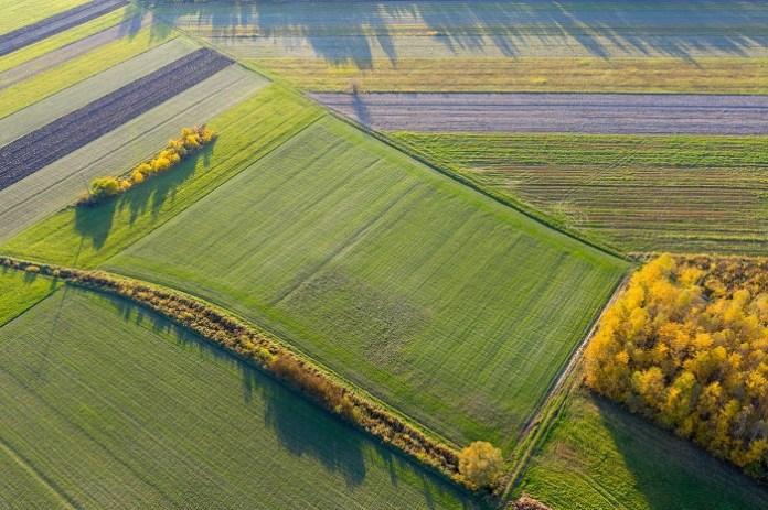 Umowa sprzedaży gruntów – kiedy zwolnienie z podatku od czynności cywilnoprawnych?