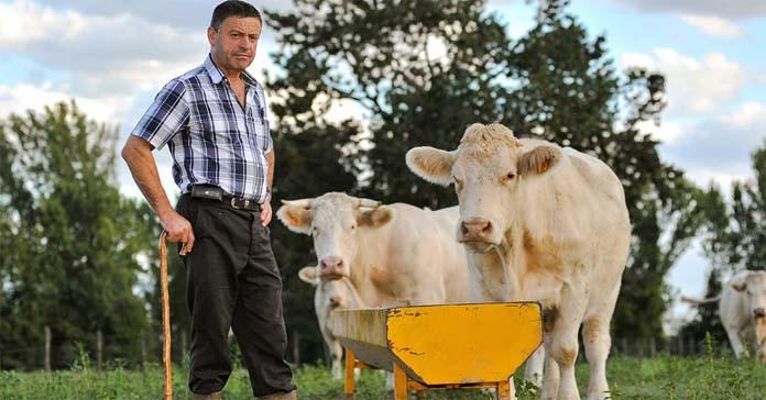 ARiMR, PROW, przekazanie gospodarstwa, Płatności na rzecz rolników kwalifikujących się do systemu dla małych gospodarstw, system dla małych gospodarstw