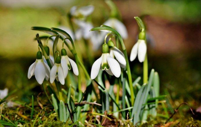 Prognoza pogody na ten tydzień: W marcu jak w garncu!
