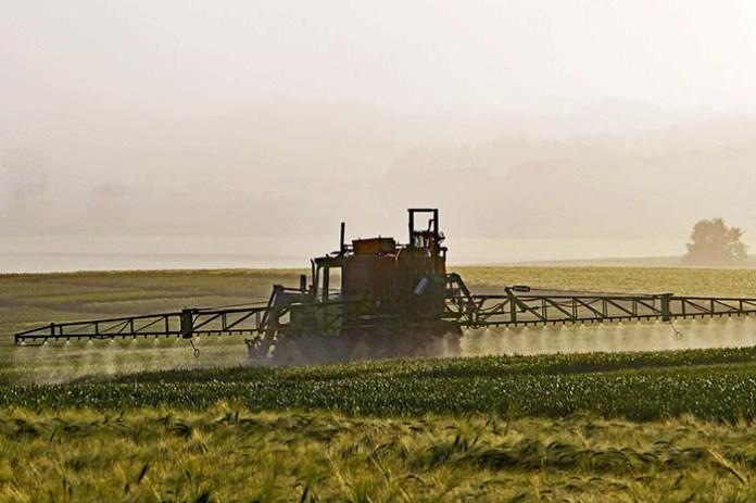 Rolnicy czekają na nowe środki ochrony roślin