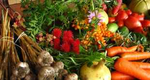 Sustainability through nutritious diets