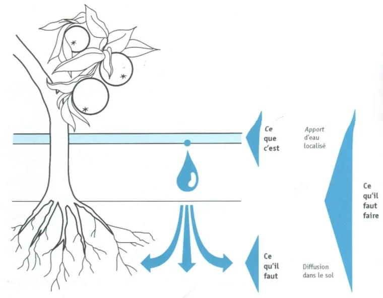 Fig. (1): irrigation localisé diffuse à partir d'un point d'impacte et n'humidifie qu'une partie du sol Source (Léopold RIEUL, Pierre RUELLE, 2003)