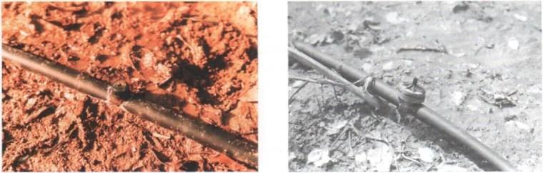 Fig. N°(6): schéma d'un goutteur montés en dérivation.  Source (Léopold RIEUL, Pierre RUELLE, 2003)
