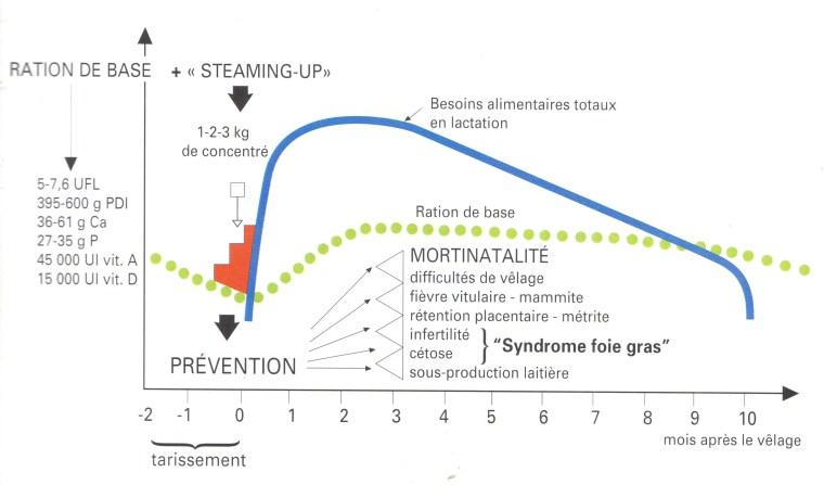Figure 5: Evolution alimentaire autour de vêlage. (wolter, 1997).
