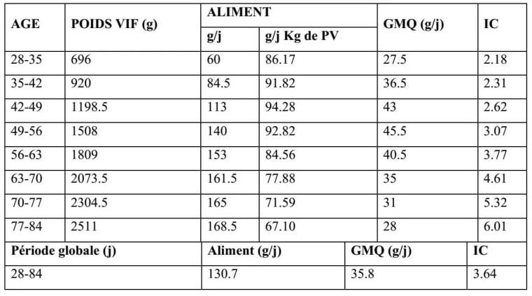 Tableau 4 : Performances zootechniques moyennes entre 28 et 84 jours du lapin de chair de souche améliorée (LAFFOLAY, 1985)