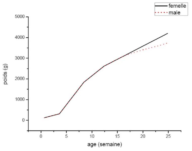 Figure 3 : La croissance post natale du lapin (format adulte moyen = 1,4Kg) (HENAFF et JOUVE, 1988)