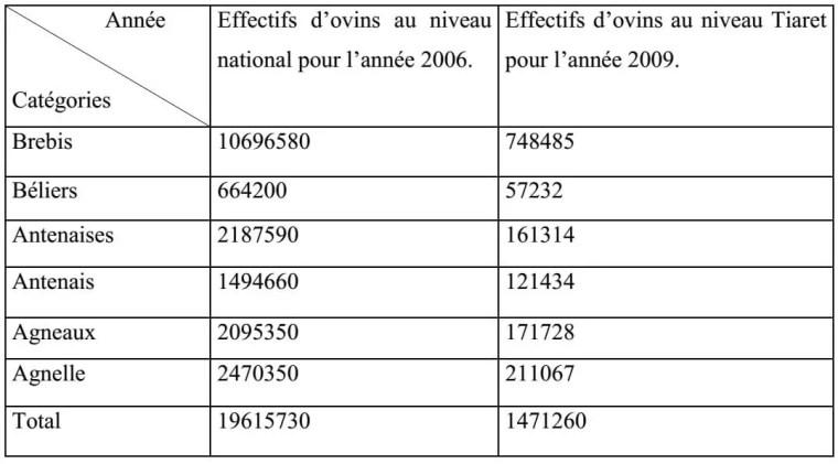Tableau n° 01 : Effectif des ovins au niveau national pour l'année 2006 et au niveau de la Wilaya de Tiaret pour l'année 2009 (DSA, 2009).