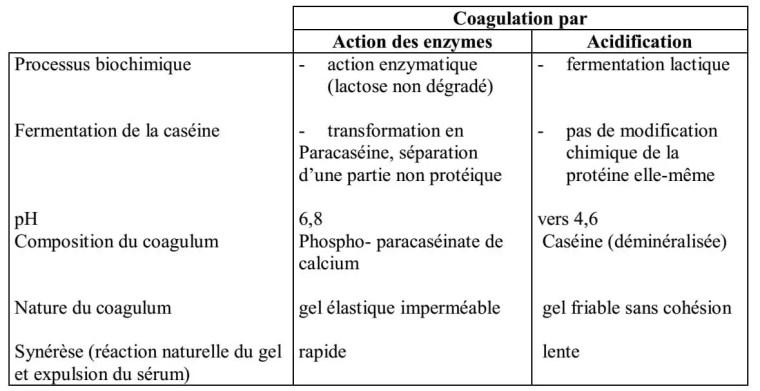 Tableau IV : Caractéristiques des deux modes habituels de coagulation du lait selon DESMAZEAUD (1992).