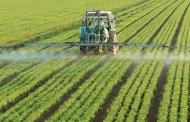 Gestion des problèmes liés aux pesticides