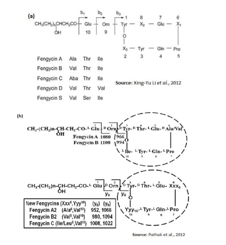 Figure 11 Structure de nouvelles variétés de fengycines (a):décrites par Yu Li et al., 2012 et (b): décrites par Pathak et al.,2012.