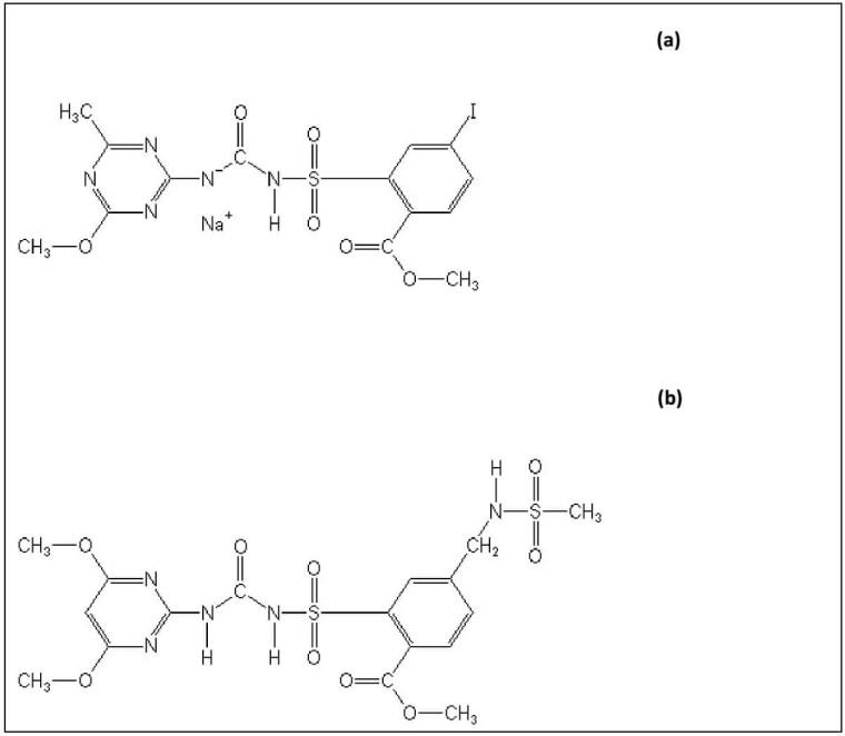 Figure 7 : Structure chimique de (a) l'iodosulfuron-méthyle sodium et (b) le mésosulfuronméthyle, Les deux molécules actives de l'herbicide Chevalier® OnePass