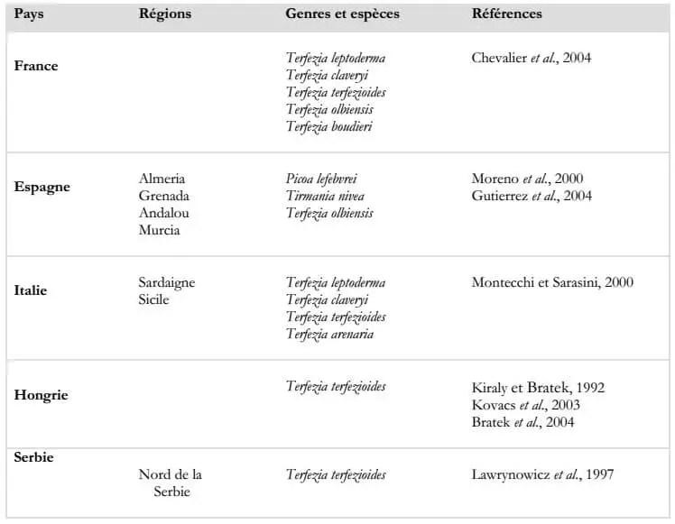 Tableau 5: Distribution des truffes du désert au niveau du continent européen.