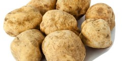 Valeurs nutritionnelles des truffes du désert