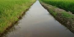 Notion de la réutilisation des eaux usées