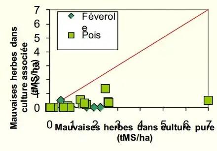 Figure 2 : Développement des adventices par rapport aux cultures pures de légumineuses.